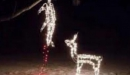 Colorado Christmas